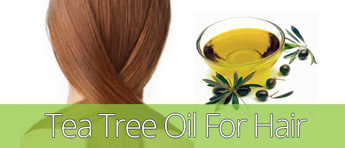 Tea Tree Oil For Itchy Scalp Natural Hair