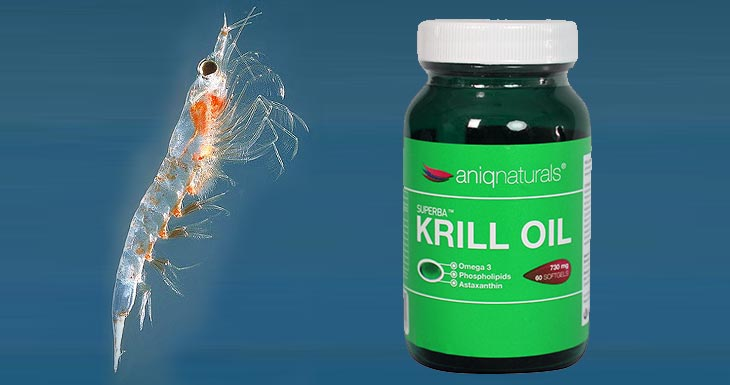 Krill oil benefits health weight loss cholesterol for Triglyceride fish oil