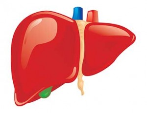 what-does-glutathione-do-for-liver