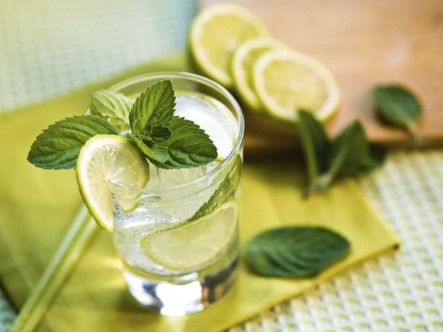 Tonic-Water-Calories-Diet-Slime-line-Tonic-Water-Gin-Vodka