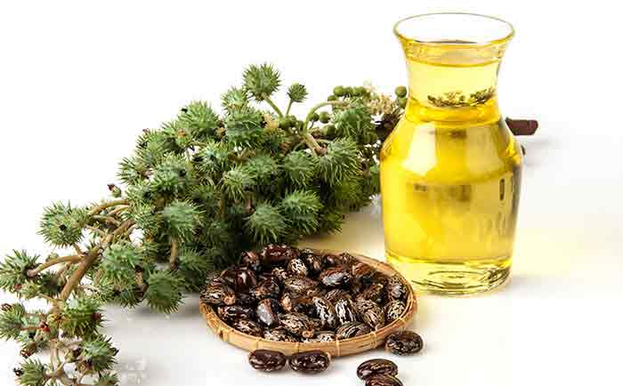 castor oil for acne scars uses reviews